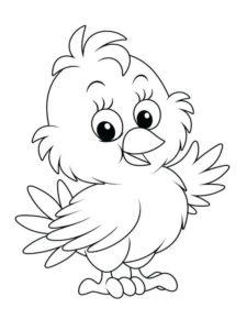 1.Gambar Mewarnai Ayam