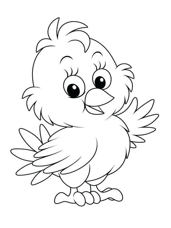 15 Gambar Ayam Untuk Di Warnai