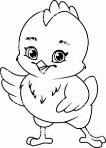 5.Gambar Mewarnai Ayam