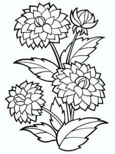 6. Gambar Mewarnai Bunga