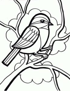 6.Gambar Mewarnai Burung