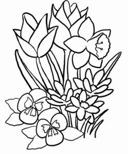 7. Gambar Mewarnai Bunga