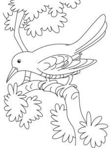 7.Gambar Mewarnai Burung