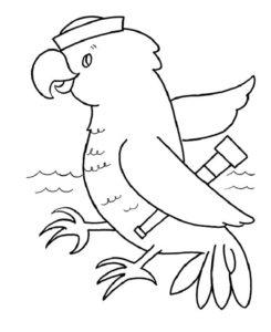 9.Gambar Mewarnai Burung