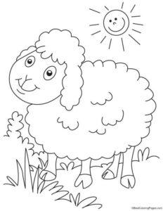 Gambar Mewarnai Domba 2