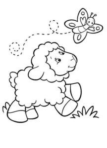 Gambar Mewarnai Domba 3