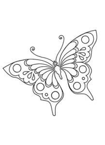 Gambar mewarnai kupu kupu 4