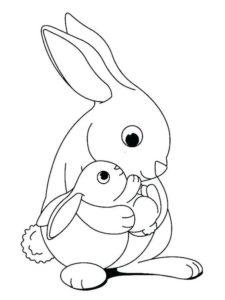 2.Gambar Mewarnai Kelinci