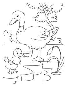 2.Gambar Mewarnai Bebek