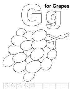 2.Gambar Mewarnai Buah Anggur