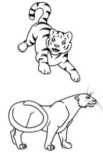2.Gambar Mewarnai Harimau