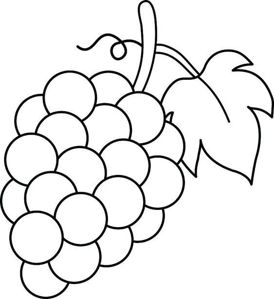 3.Gambar Mewarnai Buah Anggur