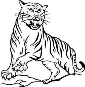 3.Gambar Mewarnai Harimau