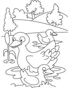 5.Gambar Mewarnai Bebek