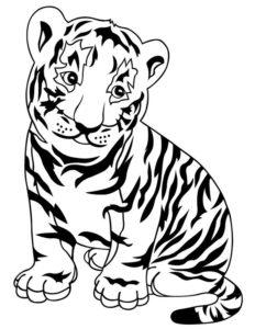 5.Gambar Mewarnai Harimau