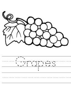 8.Gambar Mewarnai Buah Anggur