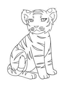 8.Gambar Mewarnai Harimau
