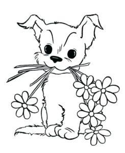 12.Gambar Mewarnai Anjing