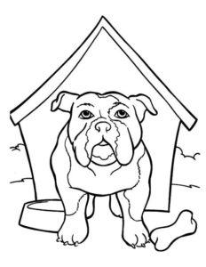 2.Gambar Mewarnai Anjing