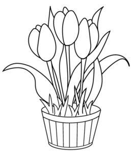 3.Gambar Mewarnai Bunga Tulip