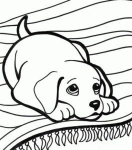 4.Gambar Mewarnai Anjing