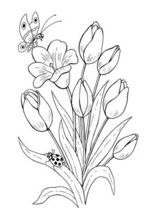 6.Gambar Mewarnai Bunga Tulip