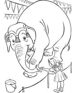 6.Gambar Mewarnai Gajah