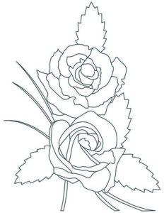 7.Gambar Mewarnai Bunga Mawar