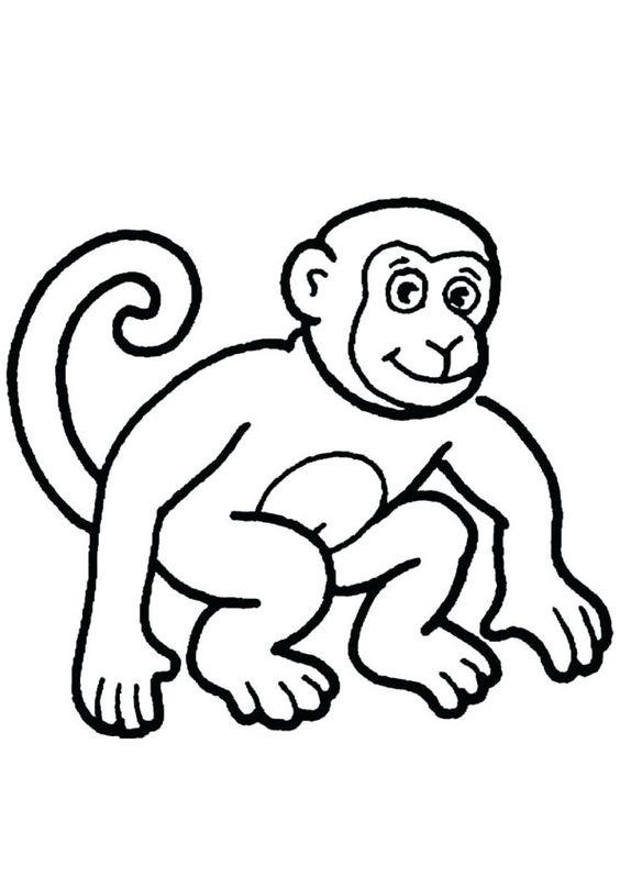 4.Gambar Mewarnai Monyet