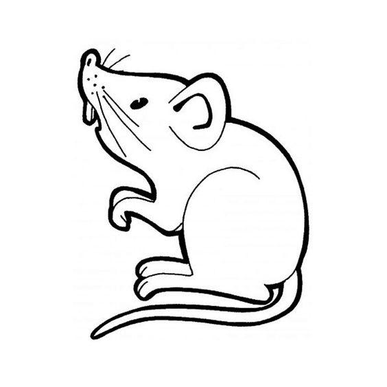 4.Gambar Mewarnai Tikus